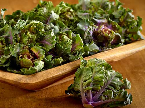 Kalettes: A Brand New Vegetable