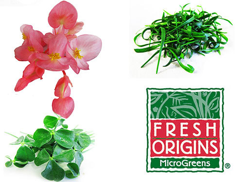 Fresh Origins Micro Greens and Edible Flowers