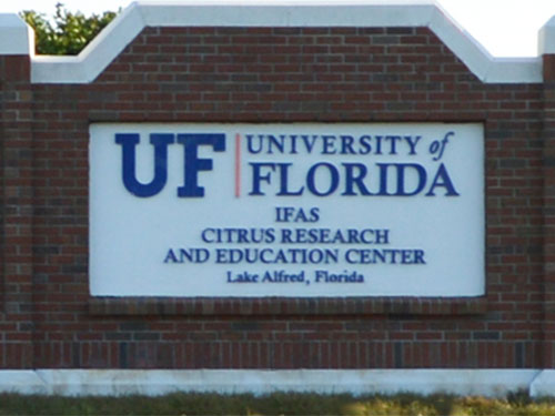 University of Florida Citrus Research